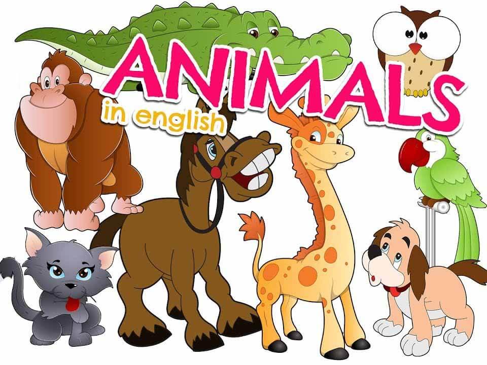 animales-ingles