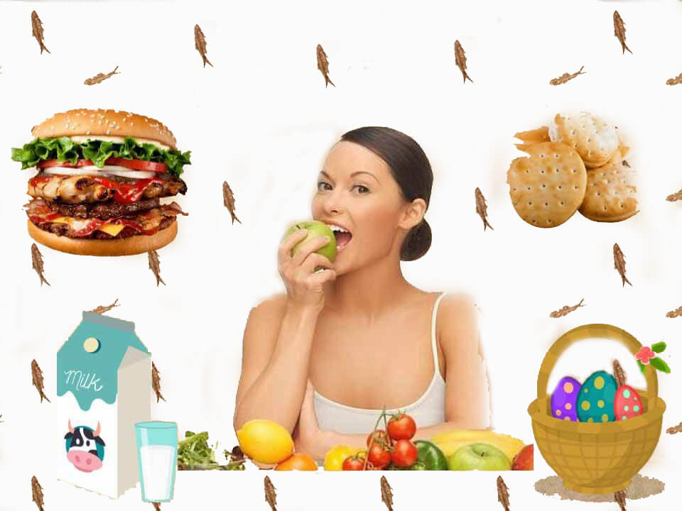 Vocabulario-comida
